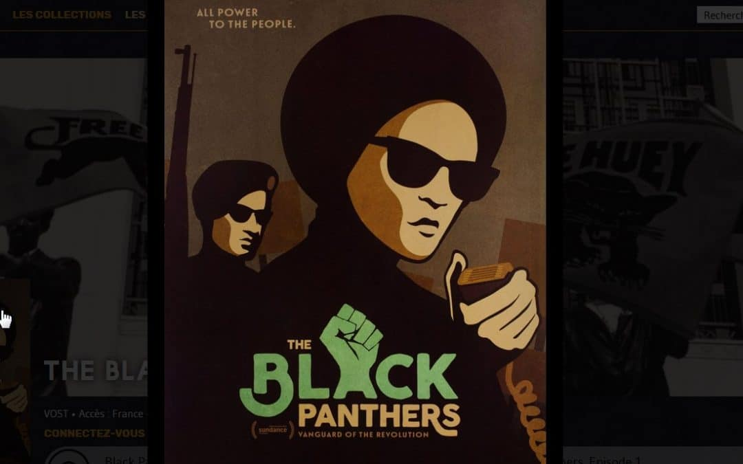 The Black Panthers Party